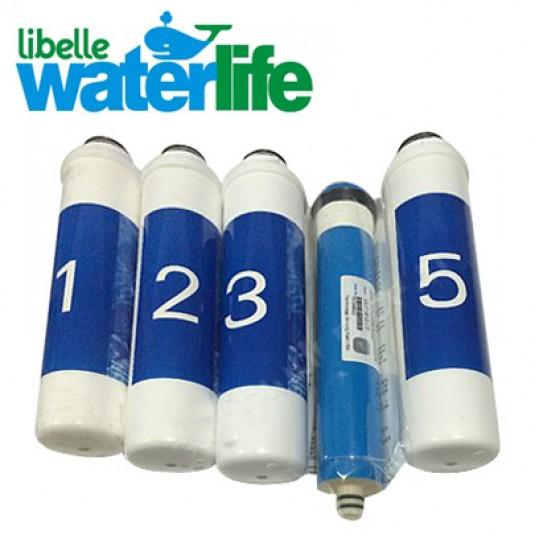 WaterLife Filtre Değişimi